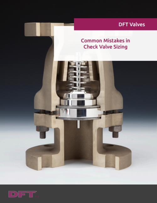 Common Mistakes in Check Valve Sizing