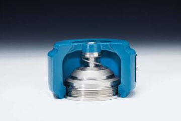DFT WLC Check valve